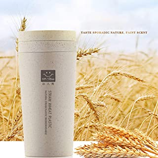 Fragil tox Coffee Bottle Stainless Kitchen Wheat Straw Double Insulated Gift Mug Tumbler with Lid Eco-Friendly Thermos Bottle Bottle Insulated Coffee Thermos Cup CC4