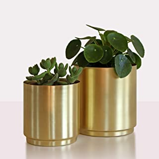 Best brass pots for plants Reviews