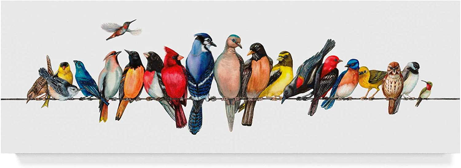 Trademark Fine Art Large Bird Menagerie Ii by Wendy Russell, 8x24-Inch