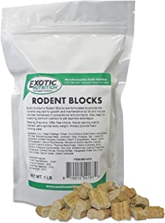 rodent block for squirrels