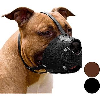 CollarDirect Leather Muzzle for Large Dog Biting Training Barking Secure Soft Pitbull Basket Staffordshire Terrier Black Brown