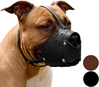 CollarDirect Pit Bull Pitbull Terrier Secure Basket Dog Muzzle Genuine Leather Staffordshire Terrier