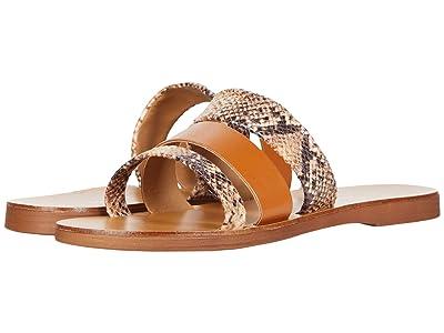 Massimo Matteo Snake Leather Slide (Cognac/Snake) Women