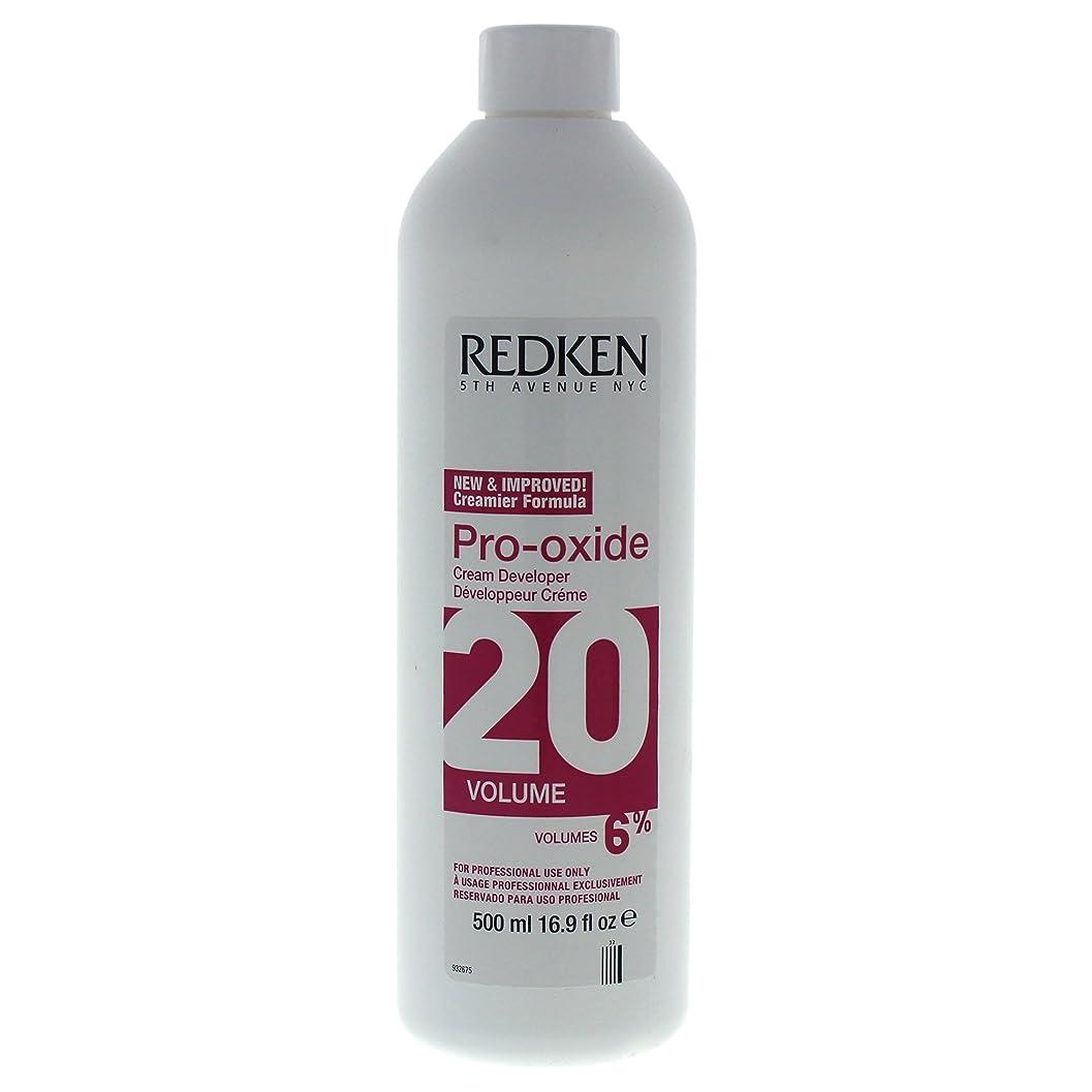 位置する漏れ簿記係Pro-Oxide Cream Developer 20 Volume