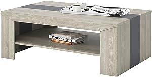 CARO-Möbel Couchtisch Wohnzimmertisch Marlen in Eiche grau mit 110 x 70 cm