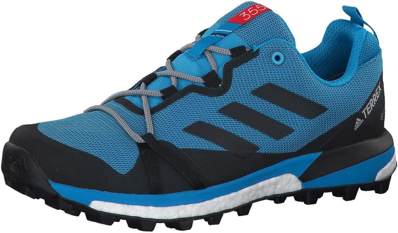 Adidas TERREX cielochaser LT GTX Sautopa Trail correrening