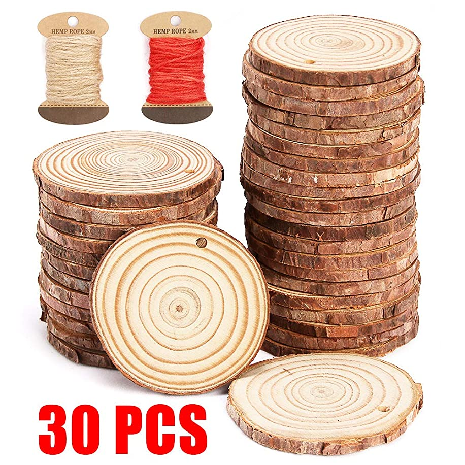 Tonak Natural Wood Slices with Holes,DIY Unfinished Wood Slice Ornaments for Crafts Christmas Ornaments for Kids 30Pcs 2.4