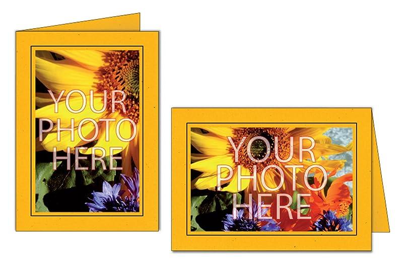 Photographer's Edge, Photo Insert Card, Sunflower with Black Border, Set of 10 for 4x6 Photos