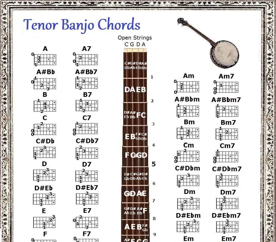 Amazon.com TENOR BANJO CHORDS CHART & NOTE LOCATOR Musical ...