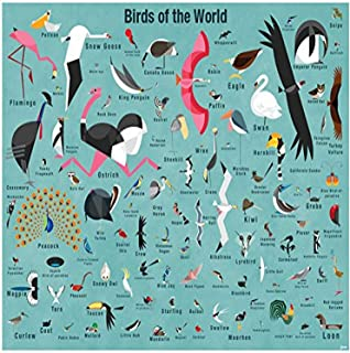 BR &Nameinternal - Birds of The World 72x54 Murals That Stick, by Daviz