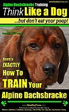 Alpine Dacksbracke Training | Think Like a Dog, But Don't Eat Your Poop! | Breed Expert Alpine Dacksbracke Training |: Here's EXACTLY How To TRAIN Your Alpine Dacksbracke