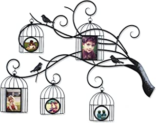 Best bird in cage photos Reviews