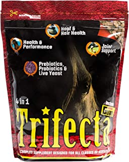 vitamin e pellets for horses