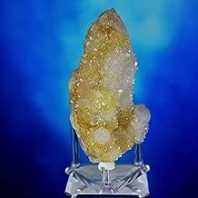 Mine Treasures Wonderful Citrine Cactus Spirit Quartz, South Africa