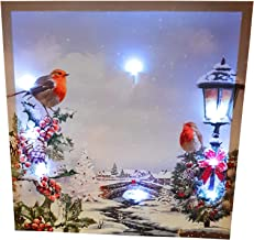 Winter Christmas Robins Village Trees Holly Snow Light Up Led Canvas Picture