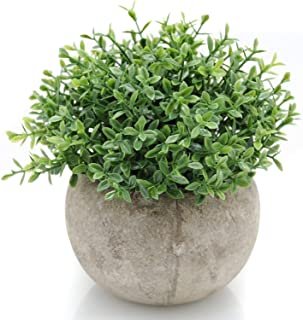 Velener Mini Plastic Artificial Plants Benn Grass in Pot for Home Decor (Green)