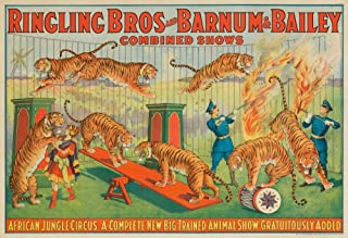 Ringling Bros and Barnum and Bailey - African Jungle Circus Vintage Poster USA c. 1922 (16x24 Fine Art Giclee Gallery Print, Home Wall Decor Artwork Poster)