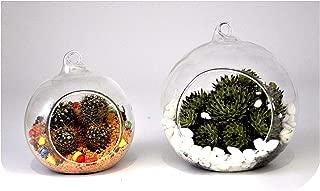 2 pcs Creative Clear Glass Plant Flower Pot Hanging Vase Planter Terrarium Container Garden Decor Home Decorative,10 cm