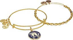 Let's Toast Set of 2 Charm Bangles