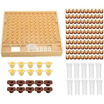 Complete queen rearing cup kit system bee beekeep catcher box /& 100 cell cups/_*S