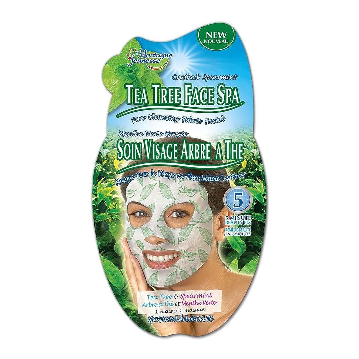 着替えるを除く蒸留Montagne Jeunesse Tea Tree Face Spa [並行輸入品]