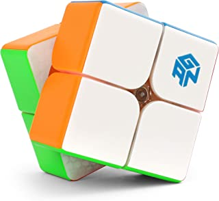 GAN 249 V2 M 2x2 Speed Cube Gans 249 2 by 2 Mini Cube Puzzle Toy 2x2x2 Magic Cube Puzzle Toy for Kids Basic Learning, 49mm...