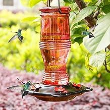Juegoal Glass Hummingbird Feeders for Outdoors, 26 oz Wild Bird Feeder with 5 Feeding Ports, Metal Handle Hanging for Gard...