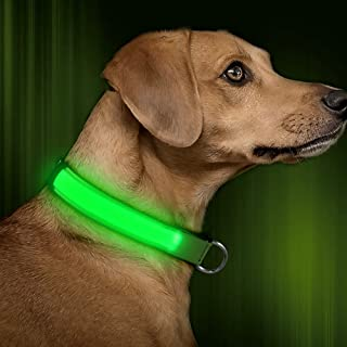 BSEEN LED Dog Collar, USB Rechargeable& Adjustable Glow in The Dark Led Pet Collar, Neoprene Padded Comfortable Nylon Light Up Collars for Small Medium Large Dogs