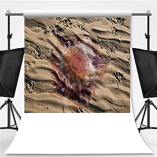 Dead Lions Mane Jellyfish at Cramond Beach Photography Backdrop,Edinburgh for Television,Flannelette:5x7ft