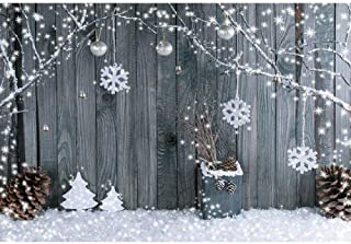 Backdrop Winter Beauty Photo Booth Backdrop Background Photography Wall Wedding Photo Booth Background Photo Studio for Photographer Backdrop White Wall Photography Background Photo Studio