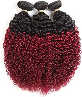 Feelgrace 2 Tone Ombre Kinky Curly Human Hair Weave 3 Bundles 1B/99J Ombre Virgin Hair Bundles Jerry Curl Black to Burgundy Curly Hair Weft Extensions (16 18 20 inches)