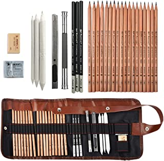 Coolzon® Lapices Dibujo Sketching Pencil Set, Carboncillos para Dibujo Lapices Set con Kit Dibujo para Principiantes y Artistas