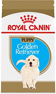 Royal Canin Nutrition Retriever 30 Pound