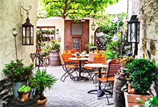 Leowefowa Europe Town Cafe Backdrop 10x8ft Vinyl Photography Backgroud Village Restaurant Front Door Rustic Cafe Old Lantern Green Tree Branch Green Plants Round Table Chairs Rural House