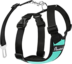 Pawaboo Dog Safety Vest Harness, Pet Car Harness Vehicle Seat Belt with Adjustable Strap and Buckle Clip, Easy Control for Driving Traveling Safety for Small Medium Dogs Cats, Medium, Lake Blue