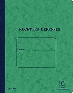 ELVE - Recettes dépenses - 220 x 170 - 80 pages