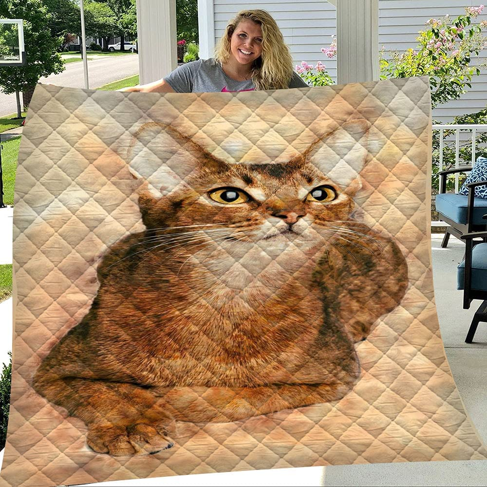 GANTEE Abyssinian Cat Art Max 47% OFF New color Ultra Weight Blanket Light Soft Quilts