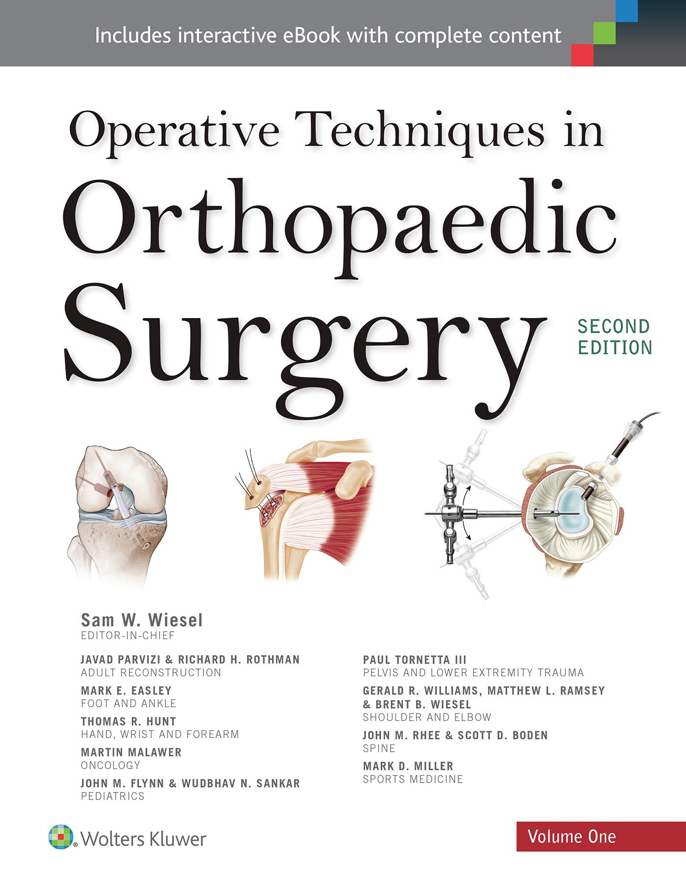 Operative Techniques Orthopaedic Surgery Four