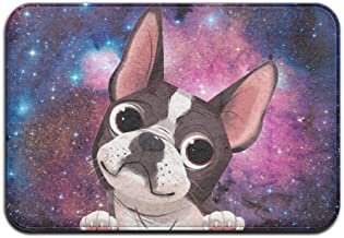 Soft Non-slip Cute Boston Terrier Bath Mat Coral Rug Door Mat Entrance Rug Floor Mats For Front Outside Doors Entry Carpet...