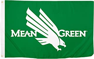Desert Cactus University of North Texas Mean Green 100% Polyester Indoor Outdoor Flag UNT (Flag/MeanGreen/G)
