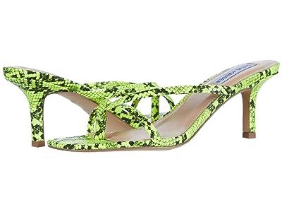 Steve Madden Lolla Heeled Sandal (Green Snake) Women