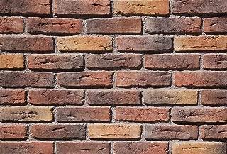 Antique Brick 2906 (Box Includes 10.76 sqft)