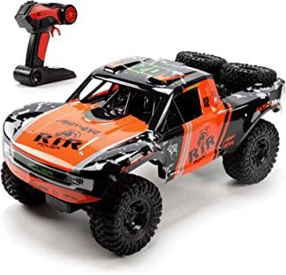 Bwine C11 1:10 Scale RC Car, Amphibious Remote Control Car for Boys Age 8-12, 4WD Waterproof Monster Truck, Rock Crawler Vehicle for Kids and Adults, 2 Batteries for 40+ Min Play