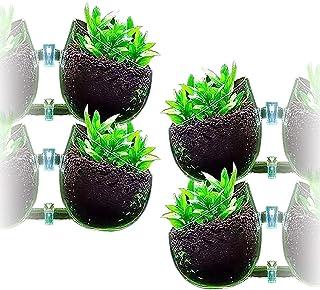 D・STONE アクアリウム 水槽 オーナメント インテリア かくれ家 ガラス 植物 無 ポット (透明, 4個)