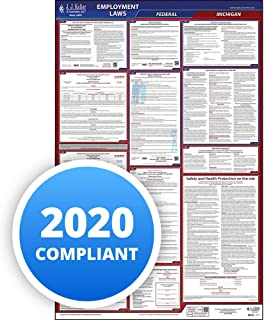 2020 Michigan Labor Law Poster, All-in-One OSHA Compliant MI State & Federal Laminated Poster (26