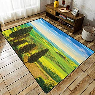 Living Room Rug,Nature,Rural Sunset in Italy Countryside with Trees Fresh Meadows and Clear Sky Image Print,Rustic Home Decor,3'3
