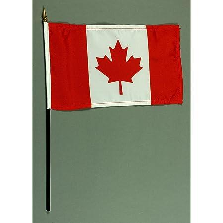 Buddel-Bini Handflagge Tischflagge Berlin 15x25 cm mit 37 cm Mast aus PVC-Rohr ohne St/änderfu/ß
