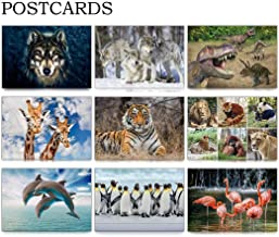 Best lenticular 3d postcards Reviews