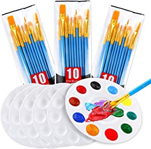 AROIC Acrylic Painting Set, 6 White Palettes and 3 Bags of 30 Brushes, Nylon Brush Head, Suitable for Oil Painting, Watercolor Painting, etc., Perfect Art Painting Set.