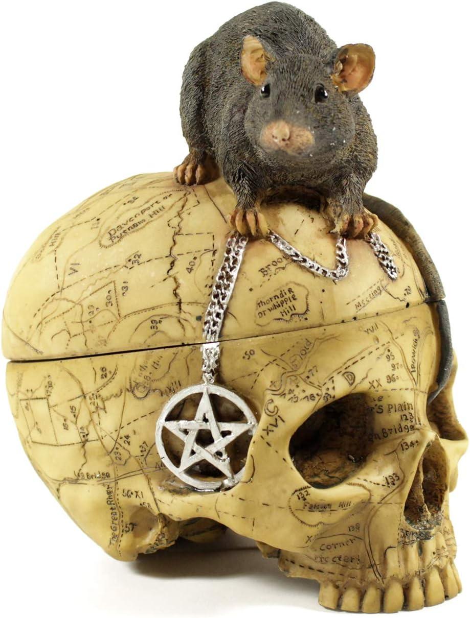 ギフト プレゼント ご褒美 Pins Bones Ouija Skull Witch with Mou Decor Gothic 新品 送料無料 Home